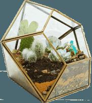 Diamond Terrarium Planter in Gold