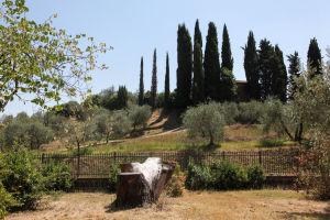 Paysage Exterieur – Villa Lena