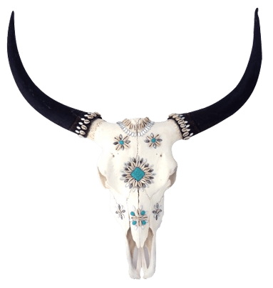 buffalo skull decoration. Black Bedroom Furniture Sets. Home Design Ideas