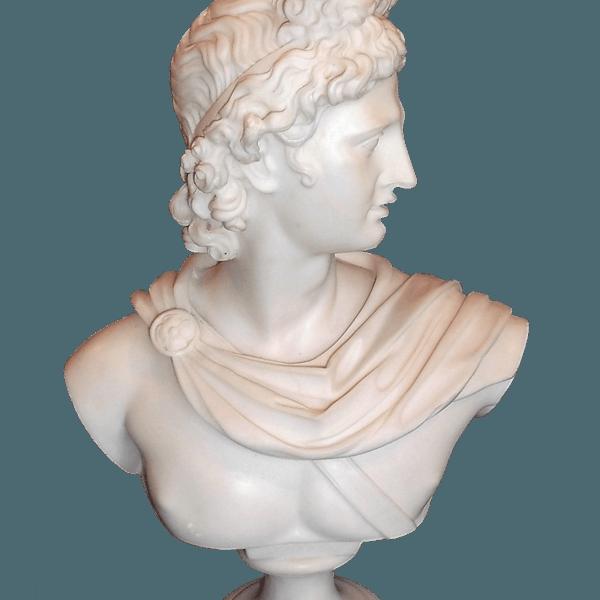 Apollo Marble Powder Bust The Socialite Family