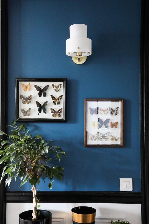 Mur bleu Papillons Collection Créatrice Maison Père Camille Omerin