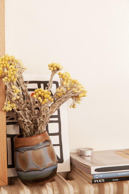 Salon Poterie Plante Photographe Yosigo Barcelone
