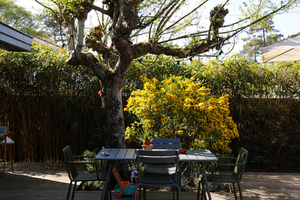 Jardin – Marina Berger
