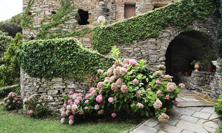 Jardin Couvent de Pozzo Brando