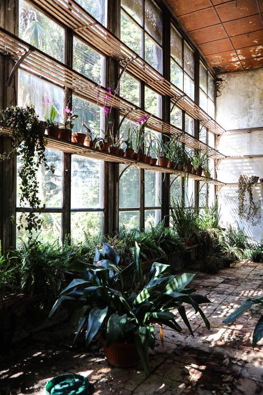 Jardin intérieur Villa Tasca Palerme