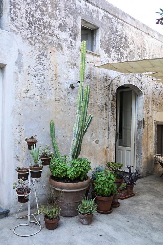Terrasse Luciano Giorgi Fondateur LGB Architecture
