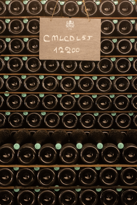 A stroll through the cellars of Rare Champagne <br> with Régis Camus