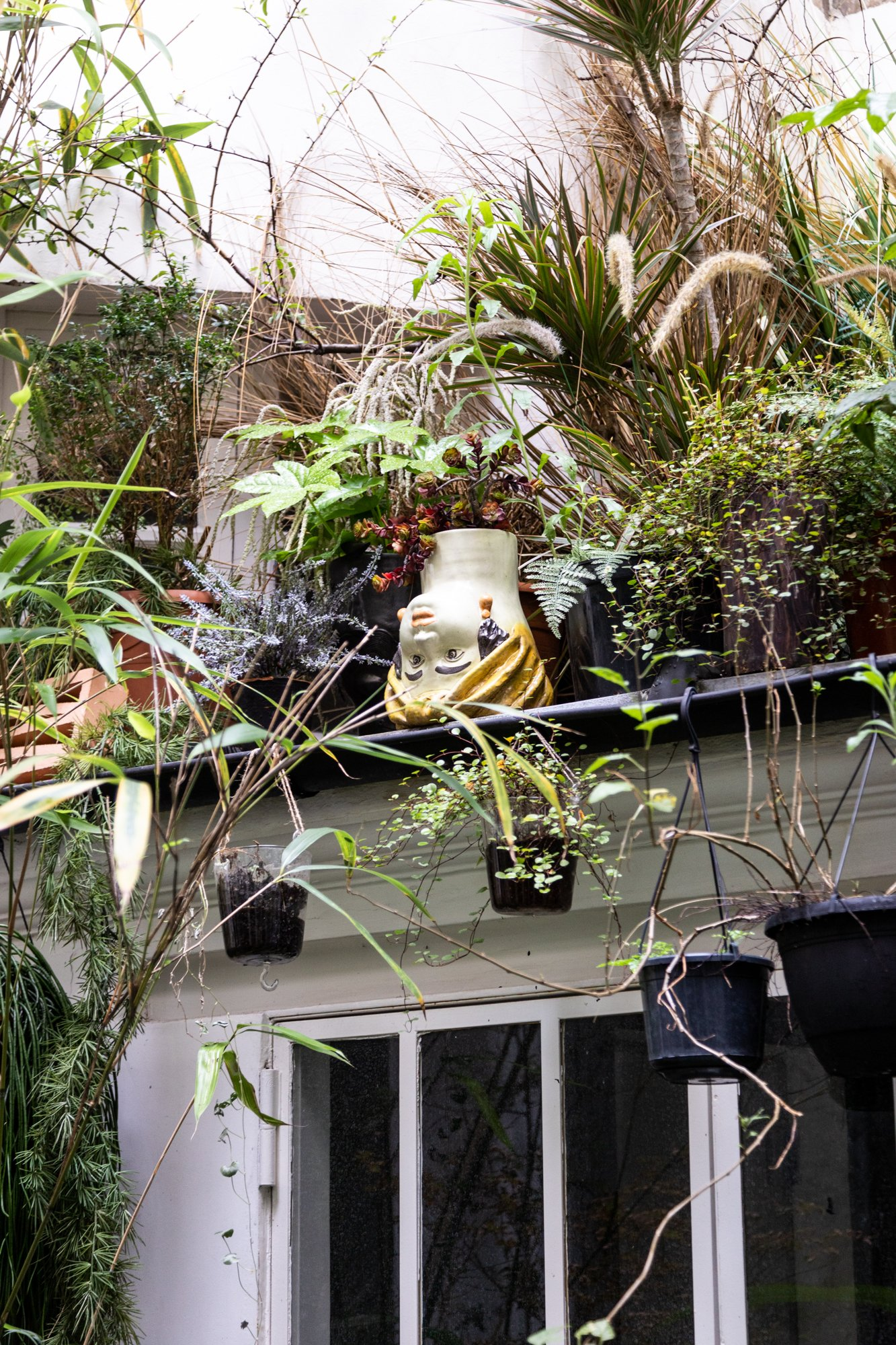 Patio végétal plantes Paris Appartement Jean-Christophe Aumas Directeur agence Singular