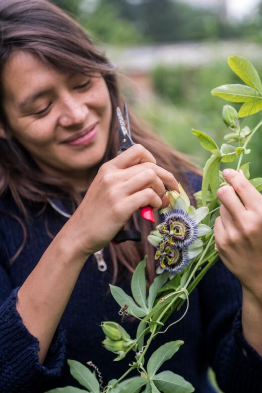 Masami Charlotte Lavault et son sécateur dans sa ferme florale Plein air à Paris